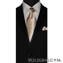 CHAMPAGNE SILK DRESS TIE