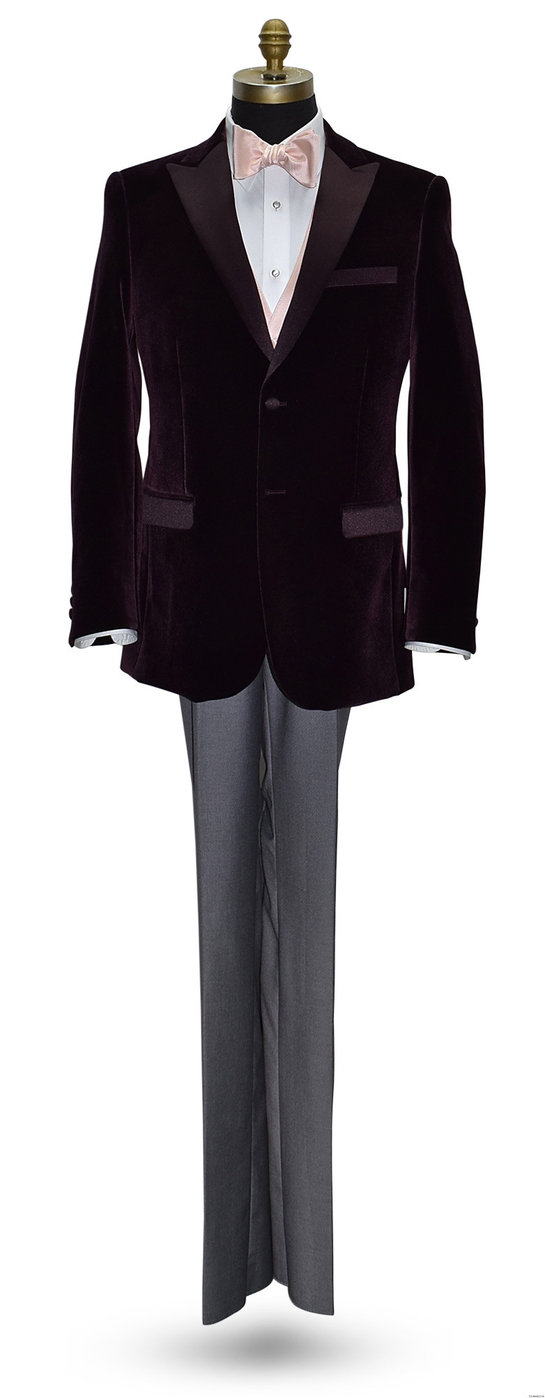 wine velvet tuxedo jacket with blush bowtie and blush vest